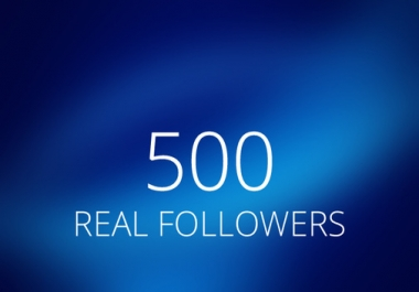 I need 500 high quality permanent twitter followers read details first