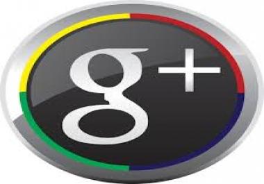 1500 + Google Cricles
