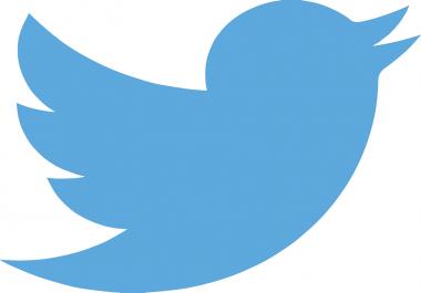 I want 50,000 Twitter Non Drop Follower