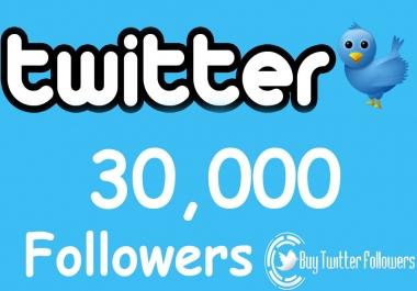 Need 30K Egg Twitter Followers