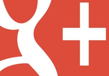 Google Plus 500 and 1000