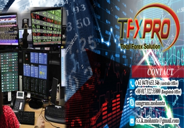 Need a Forex Expert for complete Guidance to a special FX Project