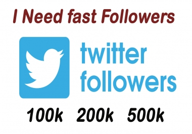 i need fast twitters followers