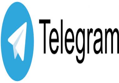 500 Telegram Group Members