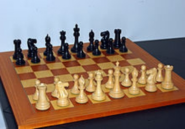 chess opening practice windows software