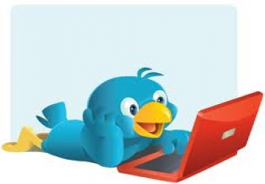 I need 40,000 twitter followers
