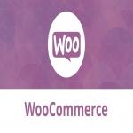 Design And Build A Custom Woocommerce Website