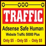 50000 + REAL Visitors to your Website or Blog to Boost your Alexa, Adsense Safe Human Website Traffic