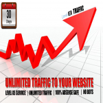 Drive Real UNLIMITED Traffic To Your Website or Blog for 30 days