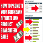 Give Top Traffic Source To Promote Click Bank Product Guaranteed Sales