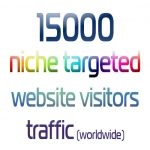 Express 15000 Niche Targeted Website Visitors Traffic