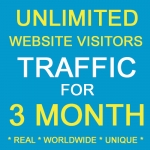 THREE MONTH Unlimited Real Unique Visitors Traffic to Website
