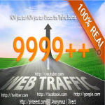 send 10 000 Real Human Unique Visitors From Google or any Selected Social site
