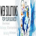 Get Cpanel professional hosting